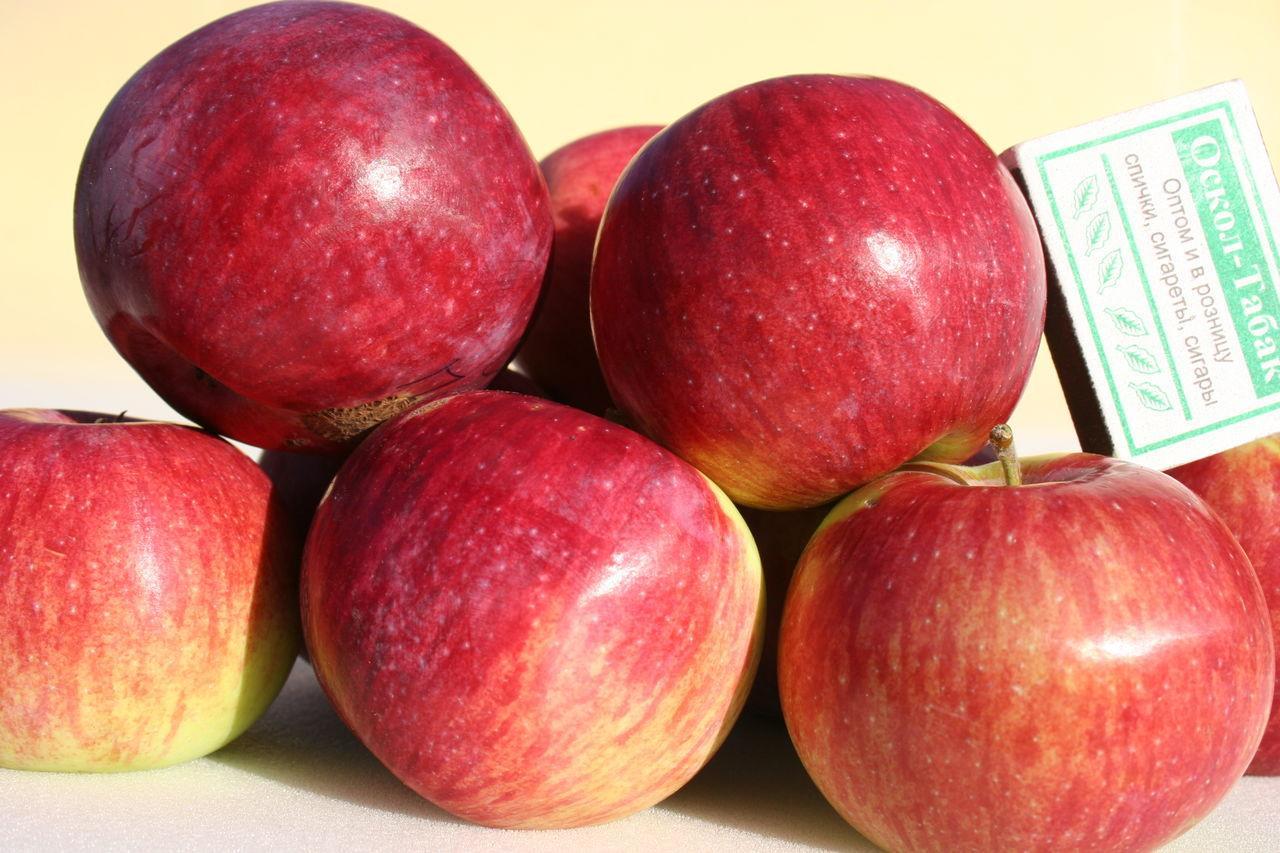 Вкус яблока