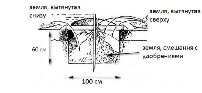 Схема подготовки ямы.