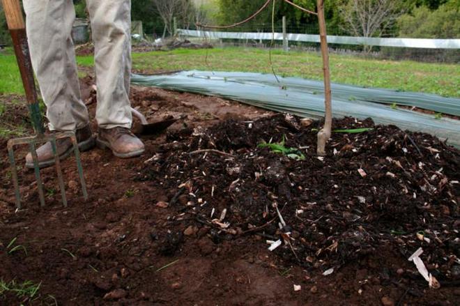 Обработанная почва