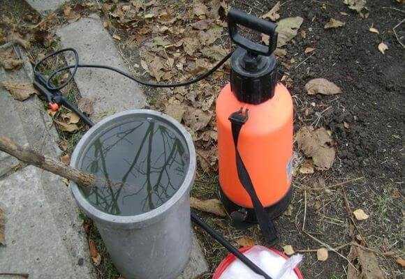 Оборудование для опрыскивания яблони