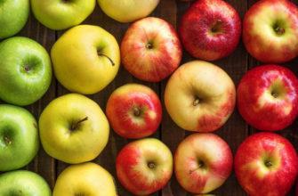 Яблочный спас в 2022 году
